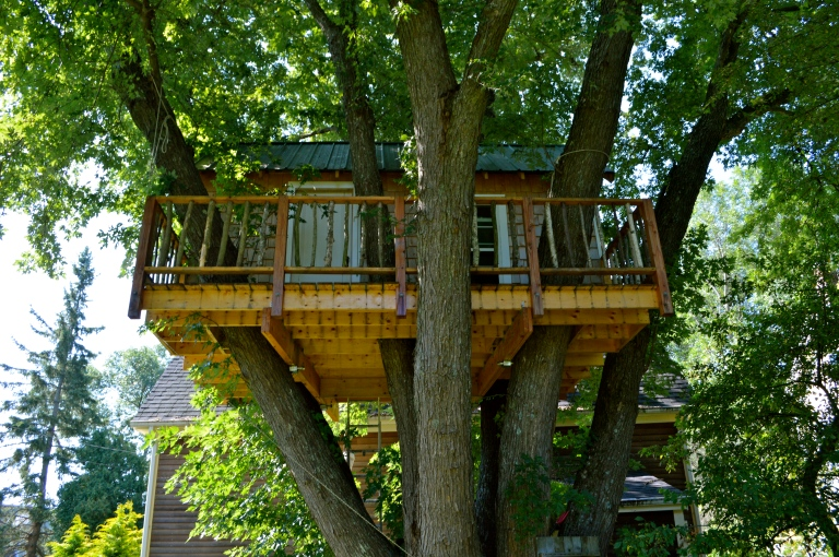 Incredible treehouse my brother built