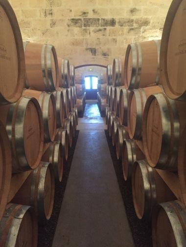 Barrels full of wine before it's bottled